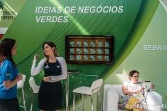Brésil 2012