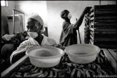 Cameroun 2007