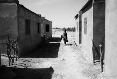 Mali 2011