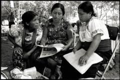 Mexique 2003