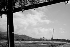 Philippines 2012